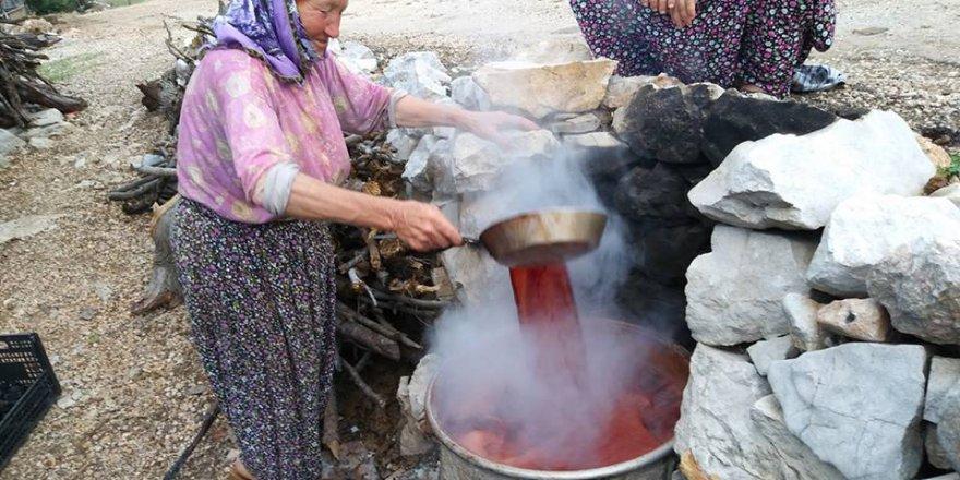 Barakdağı köyünde andız pekmezi yapımı..