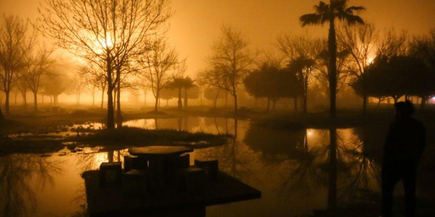 Adana'da sis etkili oldu