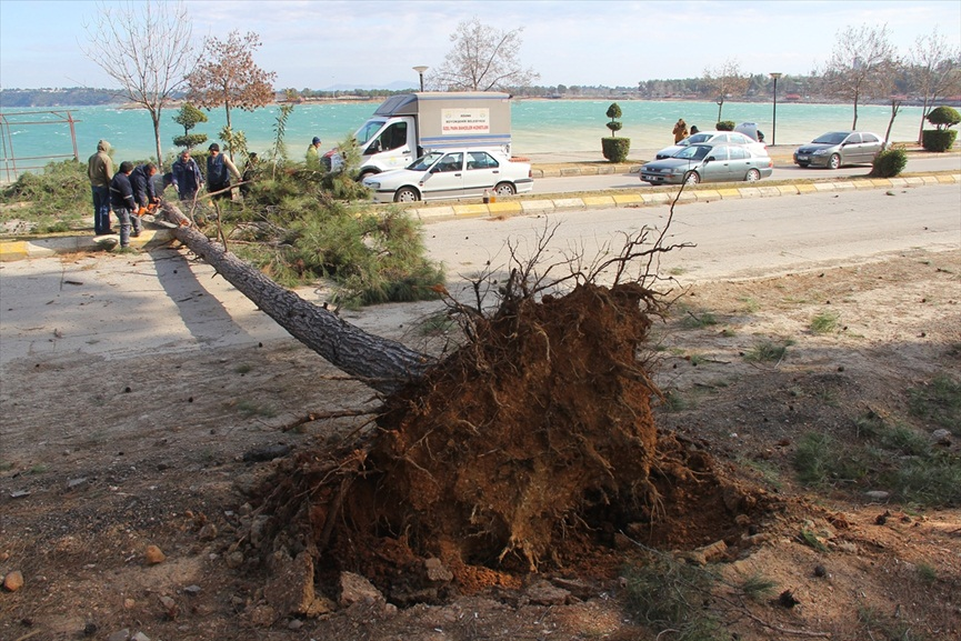 Adana'da şiddetli rüzgar
