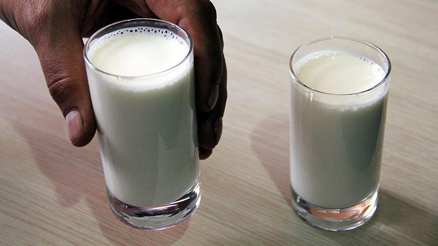 İnekleri Seviyorum Sütümü İçiyorum Projesi