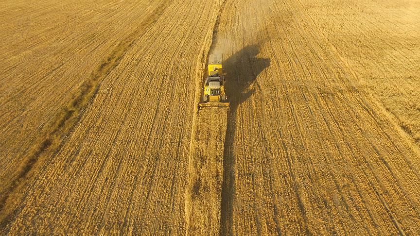 Gelecek yıl tarıma 16,1 milyar liralık destek