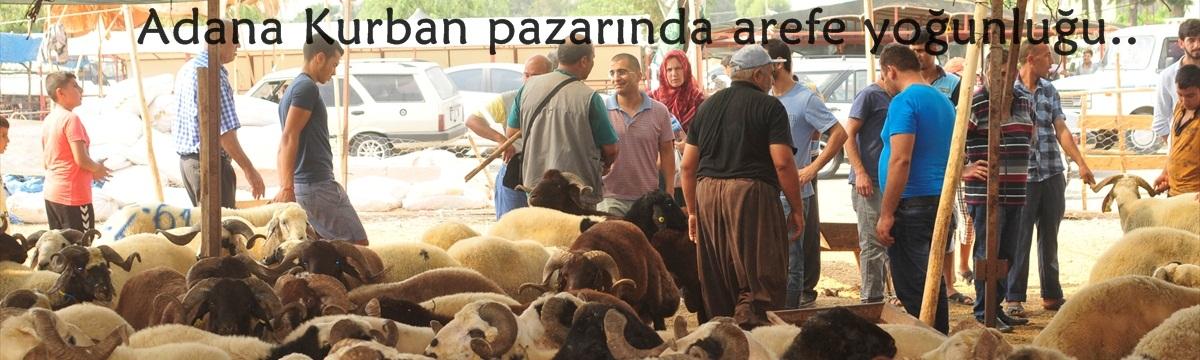 Adana'da kurbanlıklar pazardaki yerlerini aldı