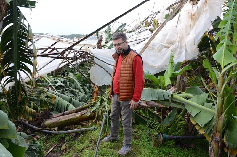 Mersin'de şiddetli yağış seralara zarar verdi