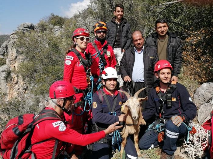 Dağ yamacında keçi kurtarma operasyonu