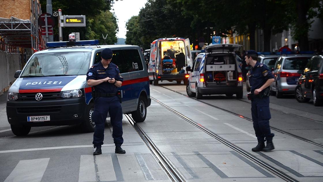 Avusturya'da bir cinayet ve PKK
