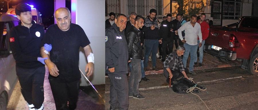 Adana'da evli çift köpek saldırısında yaralandı