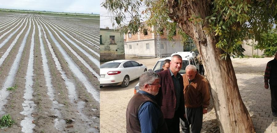 Karataşlı Çiftçiler Dolu Mağduru.