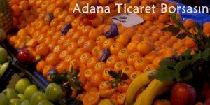 Portakal 1,15 liradan işlem gördü